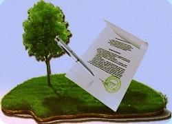 Купля-продажа земельного участка: образец договора